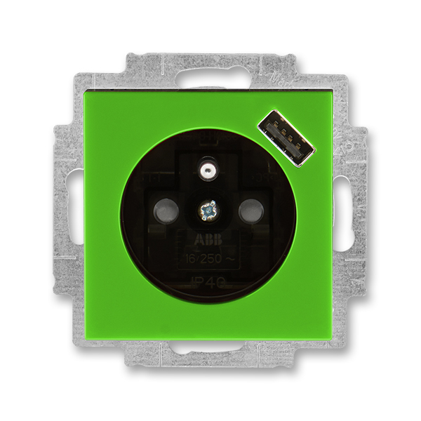 Zásuvka jednonásobná s ochranným kolíkem, s clonkami, s USB nabíjením LEVIT zelená/kouřová černá (ABB 5569H-A02357 67)